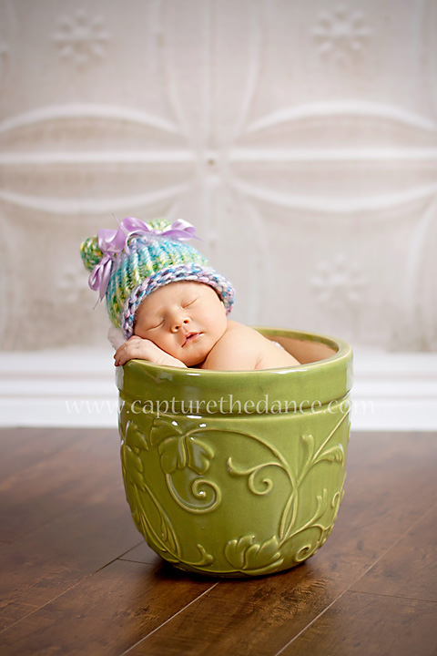A studio portrait of a newborn sleeping in a green flower pot.